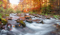 Autumn forest, mountain stream. Beautiful  , rocks covered with moss.  river  rapids and waterfalls. Carpathian. Royalty Free Stock Photo