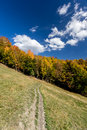 Autumn forest and path in the meadow with beautiful blue cloudy sky Stock Image
