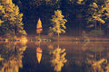 Autumn forest reflected on lake scenic view of at sunrise Royalty Free Stock Photo