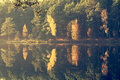 Autumn forest reflecting on lake Royalty Free Stock Photo