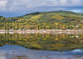 Autumn forest and reflections scenic view of colours on woodland hills reflected in the waters of beauly firth near inverness Royalty Free Stock Photo