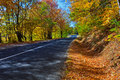 Autumn forest road a through the during Royalty Free Stock Images