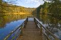 Autumn In The Foresta Umbra, G...