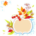 Autumn frame design vector floral Stock Images