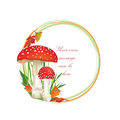 Autumn frame with fall leaves and mushroom isolated on white background circle shape toadstool illustration red amanita poisonous Royalty Free Stock Photography