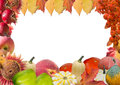 Autumn frame with fruits and leaves Royalty Free Stock Photo