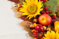 Autumn frame with fruits pumpkins and sunflowers Royalty Free Stock Photography