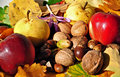 Autumn fruits 7 Royalty Free Stock Images