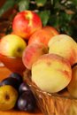 Autumn fruits some colorful ripe Royalty Free Stock Photos