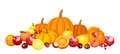 Autumn fruits and vegetables illustration of various Royalty Free Stock Images