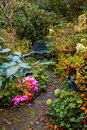 Autumn garden evening in colorful Stock Photography