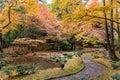 Autumn Garden And Forest In Da...