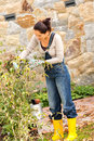 Autumn gardening young woman clipping bush hobby veranda yard Stock Photos