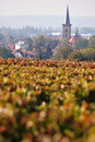 Autumn in germany a little down rheinland pfalz Stock Photography