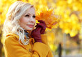Autumn girl fashion blonde beautiful woman with maple leaves in hand fall park Stock Images