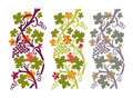 Autumn grapevine grapevines with purple and green fruits on white background Royalty Free Stock Image