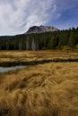 Autumn grasses below lassen peak hat creek cloud and volcanic national park Stock Photos