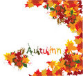 Autumn grunge background Royalty Free Stock Photos