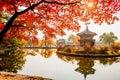 Autumn in Gyeongbokgung Palace, Seoul in South Korea