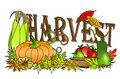Autumn harvest Stock Image