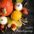 Autumn Harvest and Holiday still life. Happy Thanksgiving. Selection of various pumpkins on dark wooden background. Royalty Free Stock Photo