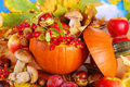 Autumn harvest in the pumpkin nature decoration for thanksgiving day Stock Photos