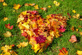 Autumn heart colorful leaves in a shape Stock Photos