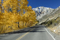 Autumn highway in Sierra Nevada mountains Royalty Free Stock Photography