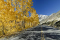Autumn highway in Sierra Nevada mountains Royalty Free Stock Photos