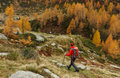 Autumn hike hiker in the colored mountains Royalty Free Stock Image
