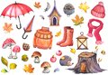 Autumn illustration of umbrellas, knitwear clothing, rubber boots, apples, mushrooms, cute owl, hedghog and colorful leaves.