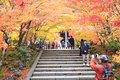 Autumn japanese garden with maple in kyoto japan Stock Images