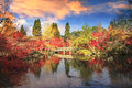 Autumn japanese garden with maple in kyoto japan Royalty Free Stock Photography