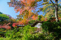 Autumn japanese garden with maple tokyo japan Royalty Free Stock Photography