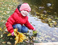 Autumn joy little girl collects maple leaves near the water with swimming duck Royalty Free Stock Images