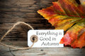Autumn label with everything is good in autumn background the saying on it Stock Photography