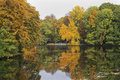 Autumn lake in the Hofgarten, Dusseldorf Stock Photography