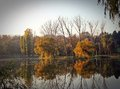 Autumn lake reflexion scene reflected in the Royalty Free Stock Image