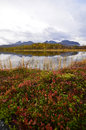Autumn lake scenery countryside scene abisko national park Stock Photos