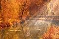 Photo : Autumn lake   fallen