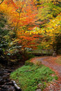 Jesenná krajina