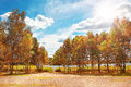 Autumn landscape in beautiful bright sunny day on lake. Blue sky with clouds and sun over gold nature. Royalty Free Stock Photo