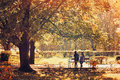 Autumn landscape - beautiful city park in sunny weather