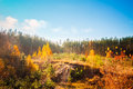 Autumn landscape with colorful forest Lizenzfreie Stockfotos