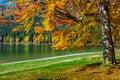 Autumn landscape with colorful forest,St Ana Lake,Transylvania,Romania Royalty Free Stock Photo