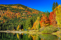 Autumn Landscape With Colorful...