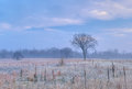 Autumn landscape frosted tall grass prairie fort custer state park michigan usa Stock Photos