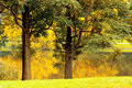 Autumn landscape nice in berlin charlottenburg Royalty Free Stock Photos