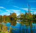 Autumn landscape of a pond Stock Images