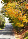 Autumn landscape with road and beautiful colored trees Royalty Free Stock Photo